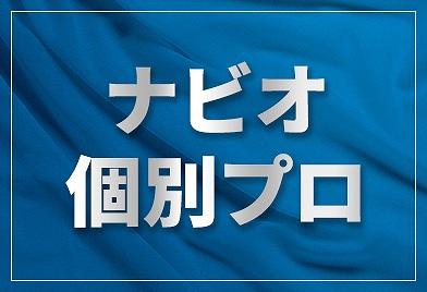 ナビオ個別プロフェッショナル ナビオ高田馬場校