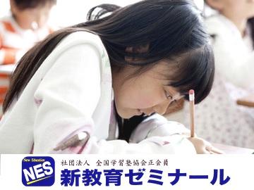 新教育ゼミナール 口コミ・料金...