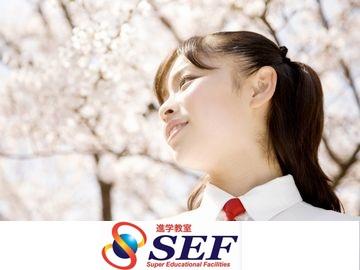 進学教室SEF【集団指導】 新小岩校