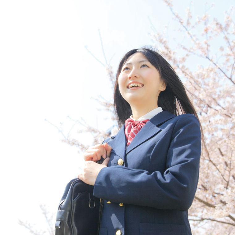 湘南 ゼミナール 映像 授業